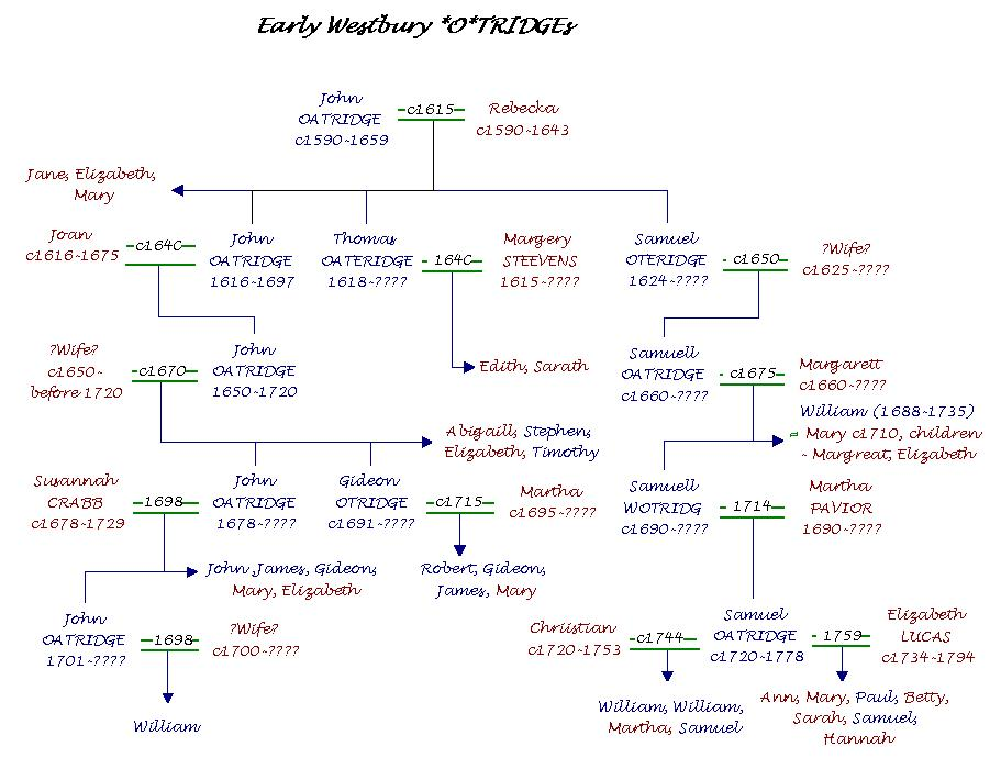 Family+tree+outline
